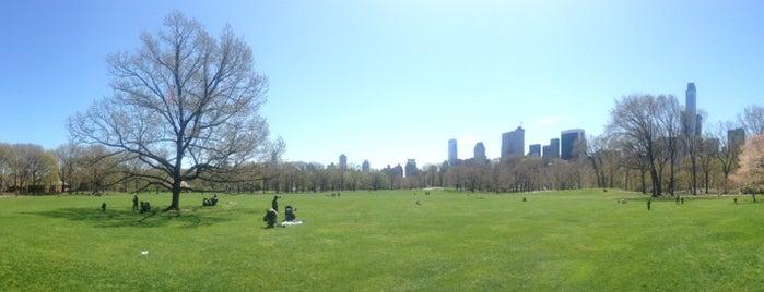 Sheep Meadow is one of Nova York.