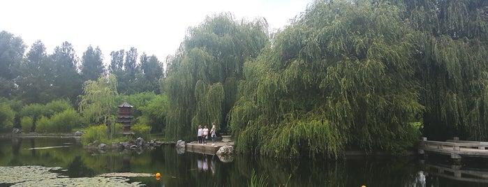 Chinesischer Garten des wiedergewonnenen Mondes is one of Olga : понравившиеся места.