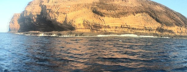 Molokini Crater is one of Stevenson Favorite US Beaches.