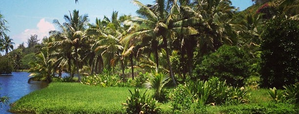 National Tropical Botanical Garden is one of Places to Visit: Kauai, HI.