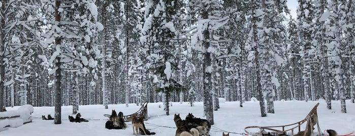Lapland Hotels Snow Village is one of Lugares favoritos de Tatsiana.