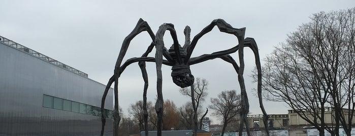Гигантский паук is one of Ksu: сохраненные места.