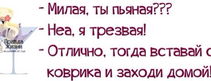 Теплая кровать! is one of Забавные )).