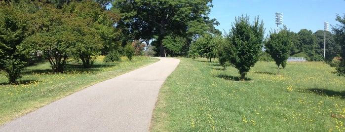 Reedy Creek Trail is one of Raleigh Favorites.