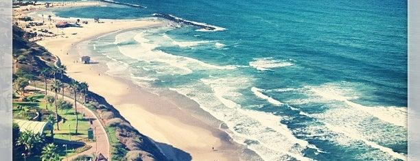 Netanya Mermaid Beach is one of Vasilyさんのお気に入りスポット.