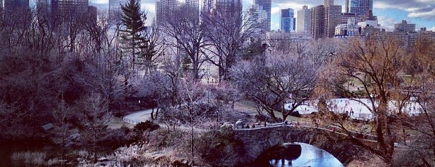 Central Park South is one of Orte, die Sir Chandler gefallen.
