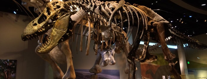 Perot Museum of Nature and Science is one of Dallas-Fort Worth.