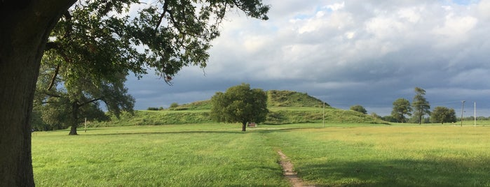 Cahokia Mounds State Historic Site is one of St. Louis.