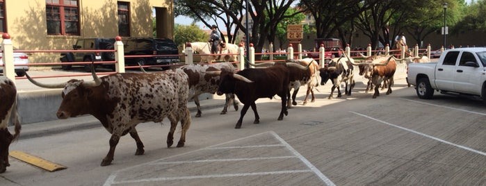 Fort Worth Stockyards National Historic District is one of Dallas-Fort Worth.