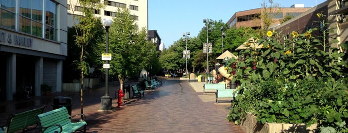 Pedestrian Mall is one of Iowa.