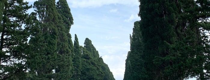 Cipressi Di Bolgheri is one of Toscana, Piemonte, Liguria, Emilia-Romagna.