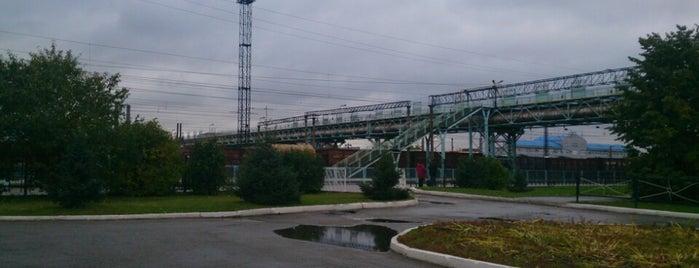 Ж/Д вокзал Новосибирск-Западный is one of Trans-Siberian Railway 🚂.