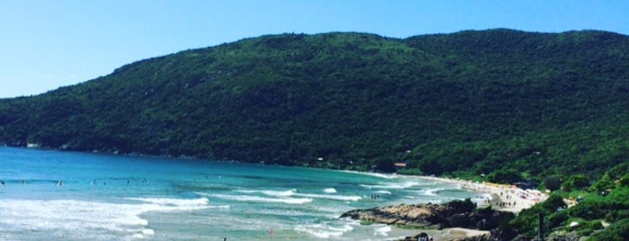 Praia do Matadeiro is one of Florianópolis.