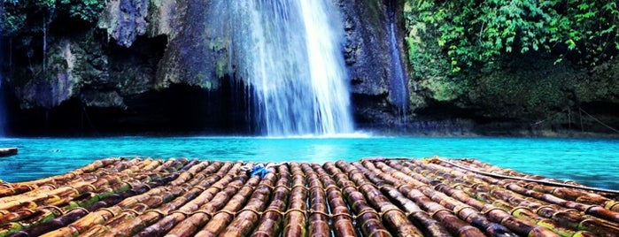 Kawasan Falls is one of Trips.