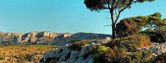 Provence adresses