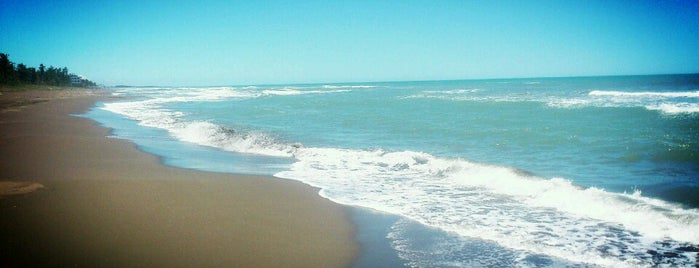 Riviera Maya is one of Ana Luisa 님이 좋아한 장소.