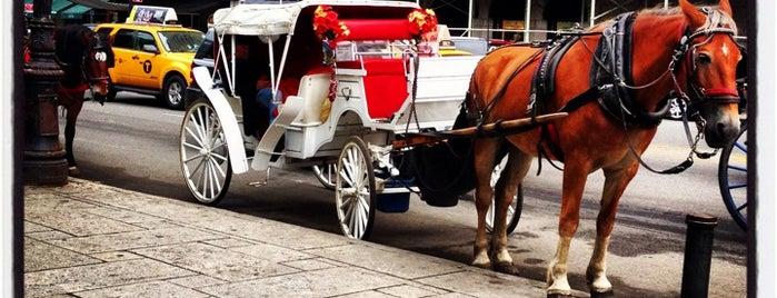 Central Park Carriage Horse Ride is one of Lieux sauvegardés par Analu.