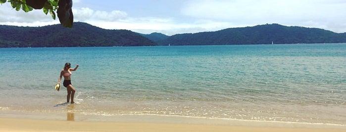 Praia do Engenho is one of Locais curtidos por Pedro.