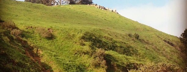 Bernal Heights Park is one of Clarity Conference Recommendations.