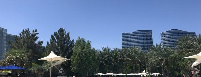 ARIA Pool & Cabanas is one of Las Vegas.