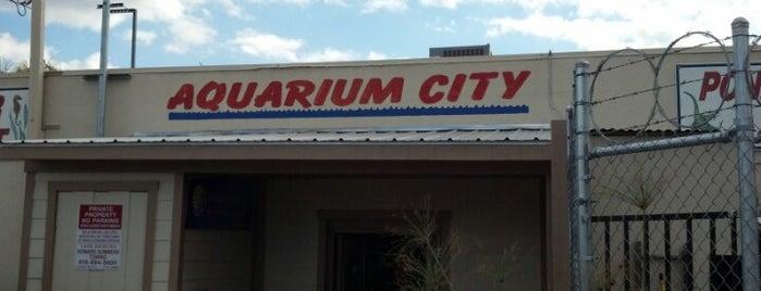 Aquarium City is one of Lieux qui ont plu à Vine31.