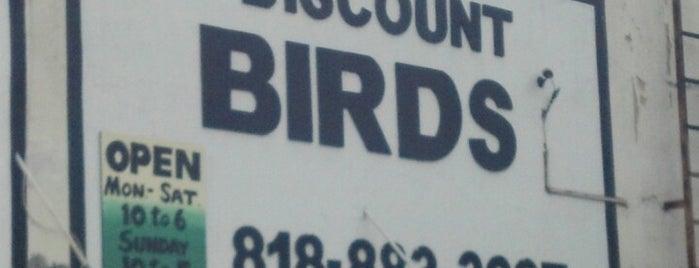 Discount Bird is one of Lugares favoritos de Melissa.