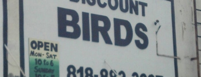 Discount Bird is one of Orte, die Melissa gefallen.