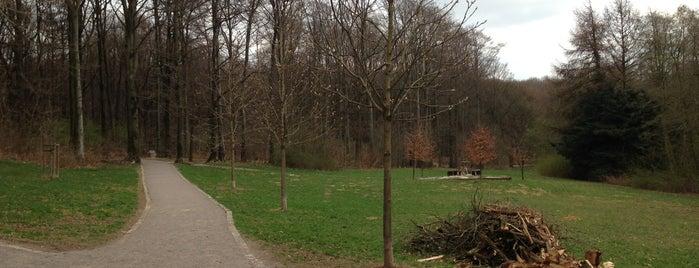 Ronsdorfer Anlagen is one of Lieux qui ont plu à Jay.