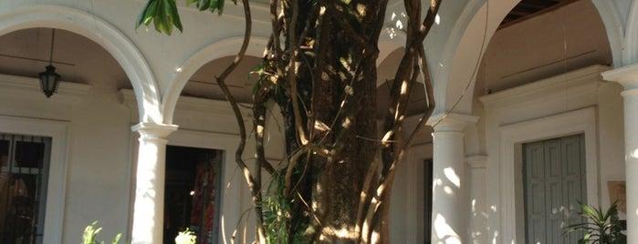 Alameda de la Casa Utrilla is one of Lugares favoritos de Shine.