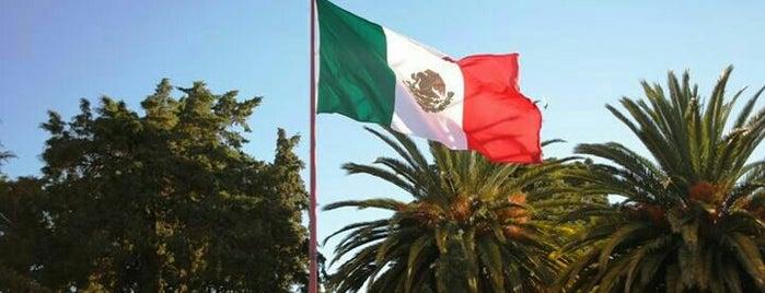 Contepec, Michoacán is one of Tempat yang Disukai Jose.