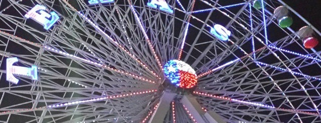 Texas Star Ferris Wheel is one of Lieux qui ont plu à Naveen.