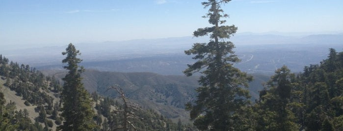 Top Of The Notch - 7880 Feet is one of favorites.