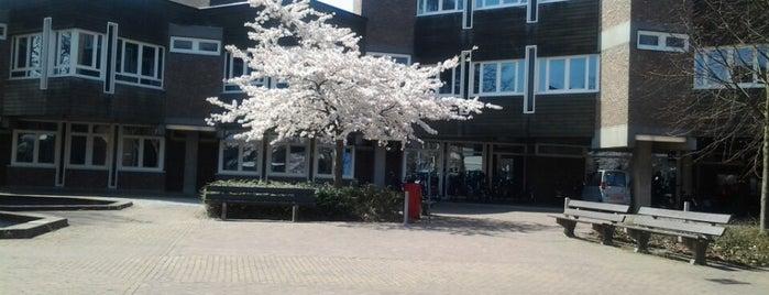 Gemeentehuis Amstelveen is one of Lieux qui ont plu à Yunus.