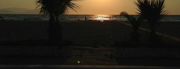 Mimoza Beach is one of Lugares favoritos de Rengin.