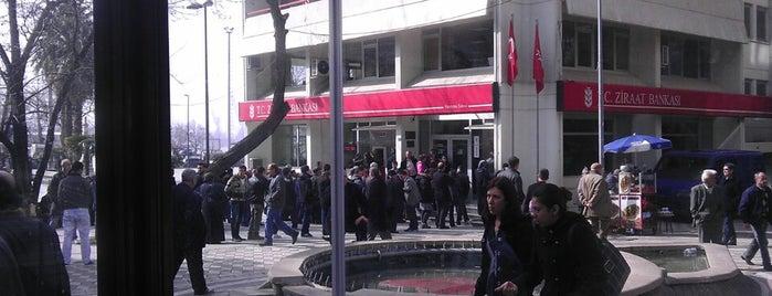 Ziraat Bankası is one of Bandırma.