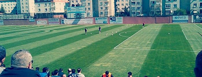 Pendik Stadyumu is one of Locais curtidos por Samet K..