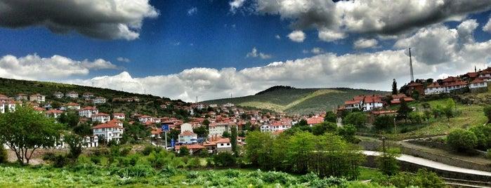 Çamlıdere is one of Ankara'nın İlçeleri.