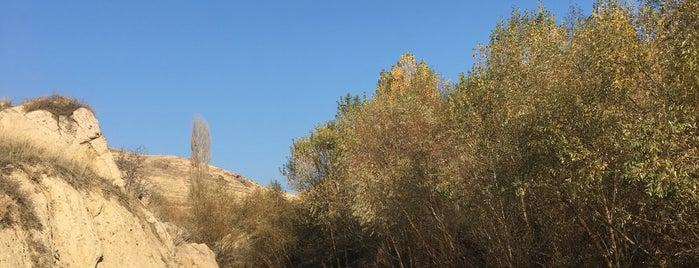 Hüseyin Gazi Dağı is one of Yasin : понравившиеся места.