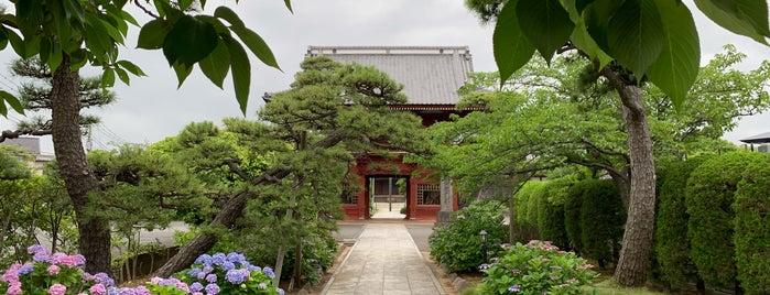 徳願寺 is one of Find My Tokyo.