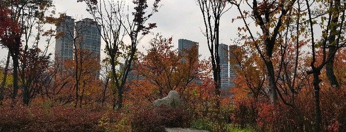 Seokcheon Lake Walking Trail is one of Seoul.