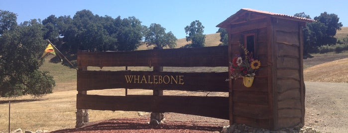 Whalebone Winery is one of Paso 2019.