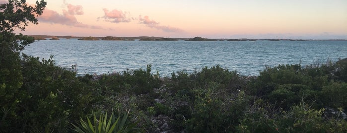 Chalk Sound is one of Turks + Caicos 🇹🇨.