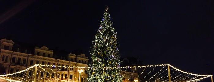 Новорічна ялинка на Софійській площі is one of Illia : понравившиеся места.