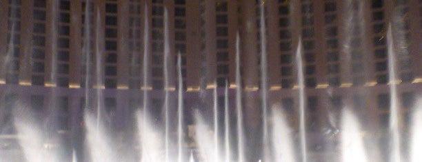Bellagio Hotel & Casino is one of Hoteles visitados.