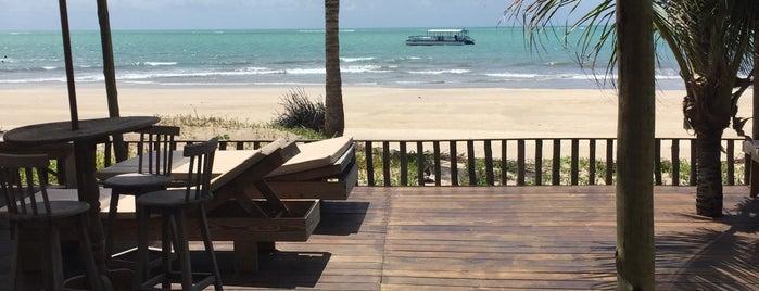 Hibiscus Beach Club is one of Lugares favoritos de Katy.