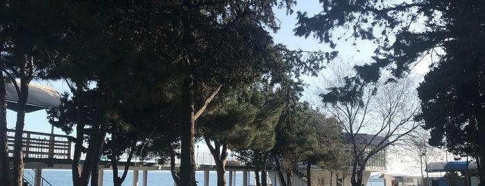 Центральный Парк is one of Stanislav 님이 좋아한 장소.