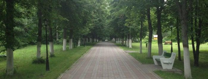 Санаторий «Подмосковье» is one of Tempat yang Disukai Станислав Григорьеви�.