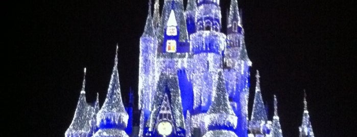 Cinderella's Holiday Wish is one of Orlando/2013.