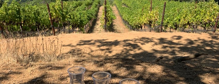 Gustafson Winery is one of 2012 Wine Country Pass Wineries.