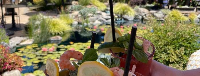 Salt & Stone is one of Sonoma/wine tasting 🍷.